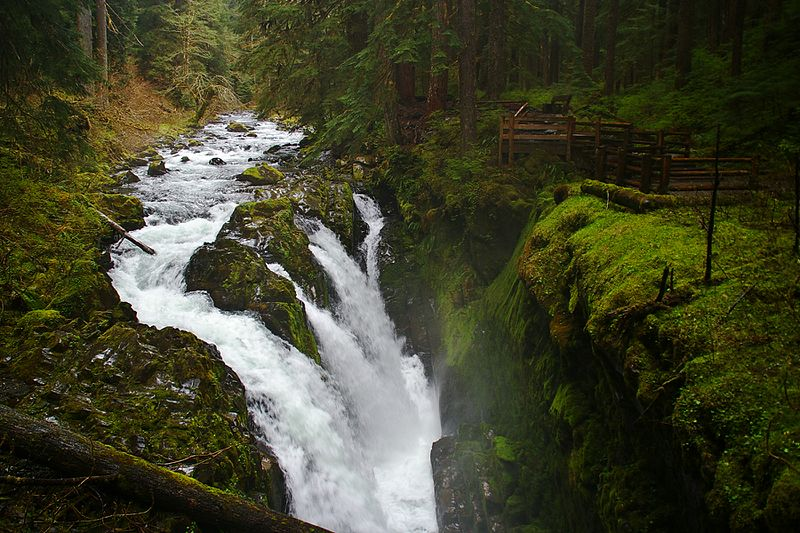 The best place to stay in Olympic National Park and Port Angeles!